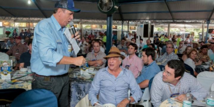 Mega Leilão negocia mais de 10 mil animais em MT