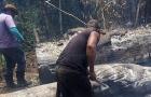 Incêndio já destrói área do Parque Nacional do Monte Pascoal há cinco dias