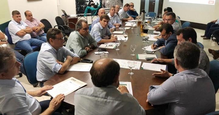 Setor florestal se reúne com Mauro Mendes e cobra solução de entraves econômicos
