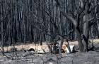 Sobe para 25 o número de mortos em incêndio
