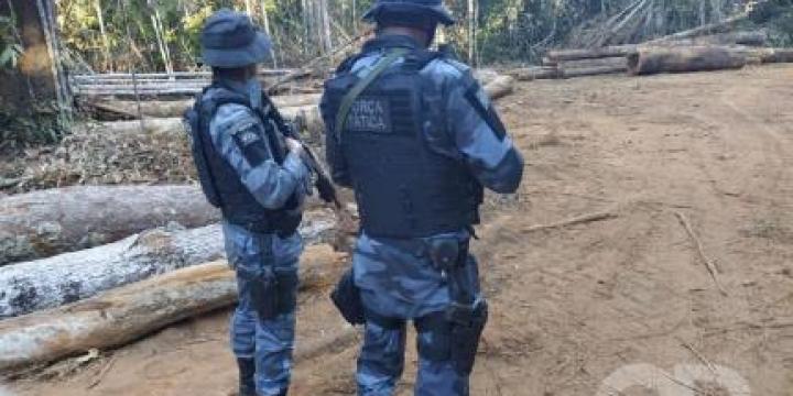 Seis pessoas são presas por crimes ambientais em Feliz Natal