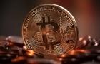 Saiba como investir em ETFs de Bitcoins