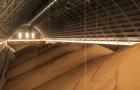 Furacão IDA nos EUA dispara prêmios da soja brasileira