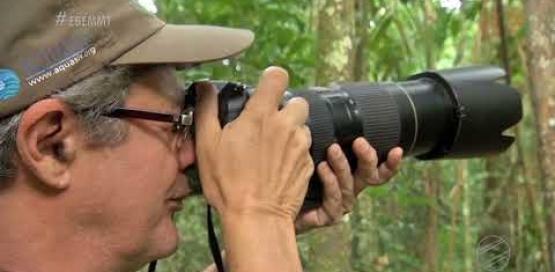 Observaçao de pássaros em Aripuanã MT